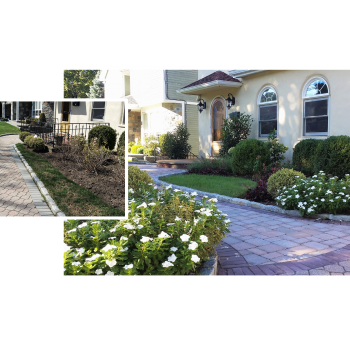 Front Walk With Charm
